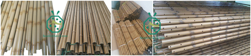 Garden or park landscape decoration steel bamboo fence screening poles