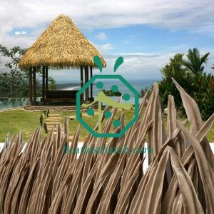 Fireproof palapa thatch replacement material