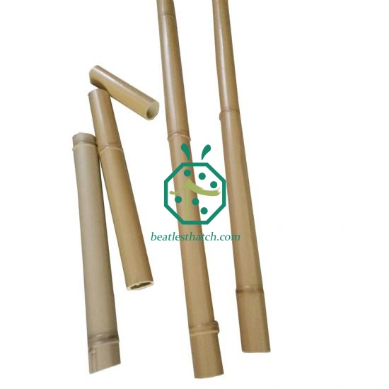 Faux bamboo stick fencing