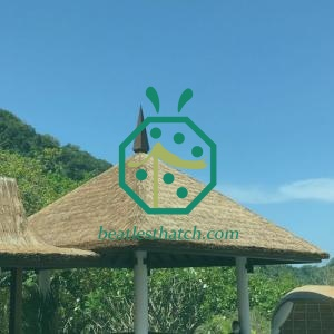 DIY tiki hut thatch roof