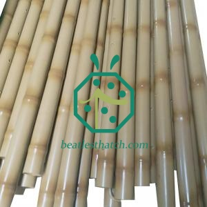 Long Stainless Steel Bamboo Sticks For Garden Edging Decoration
