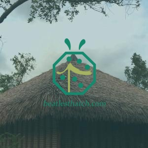 Artificial Cogon Grass Thatch Roofing For Bahay Kubo in Philippines