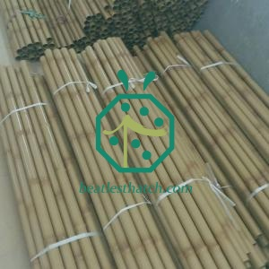 Big Size Hollow Iron Bamboo Pole For Park Garden Fencing