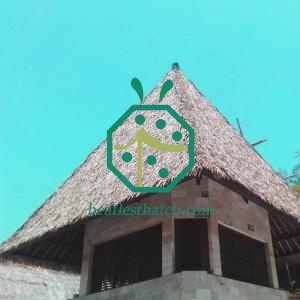 Hotel Palapa Restaurant Synthetic Thatched Roof Tiles East Timor