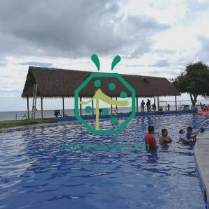 Fireproof Artificial Thatch Roof Products For Dominican Republic Resort and Residential Palapa