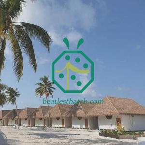 Fake Thatch Roof Kiribati